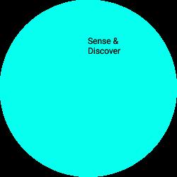 Sense & Discover